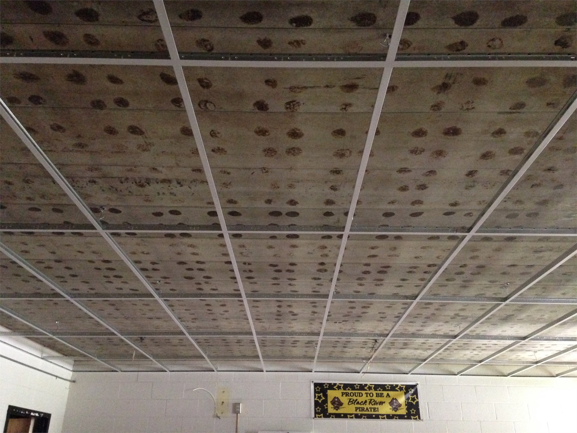 Ceiling Grid being placed